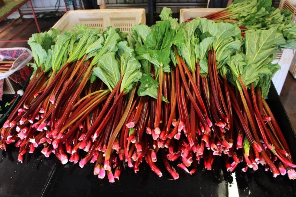 Rhubarb to be Packed